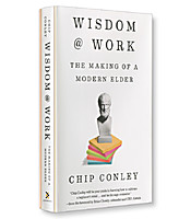 Image of Speed Review: Wisdom at Work