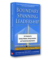 Image of Boundary Spanning Leadership